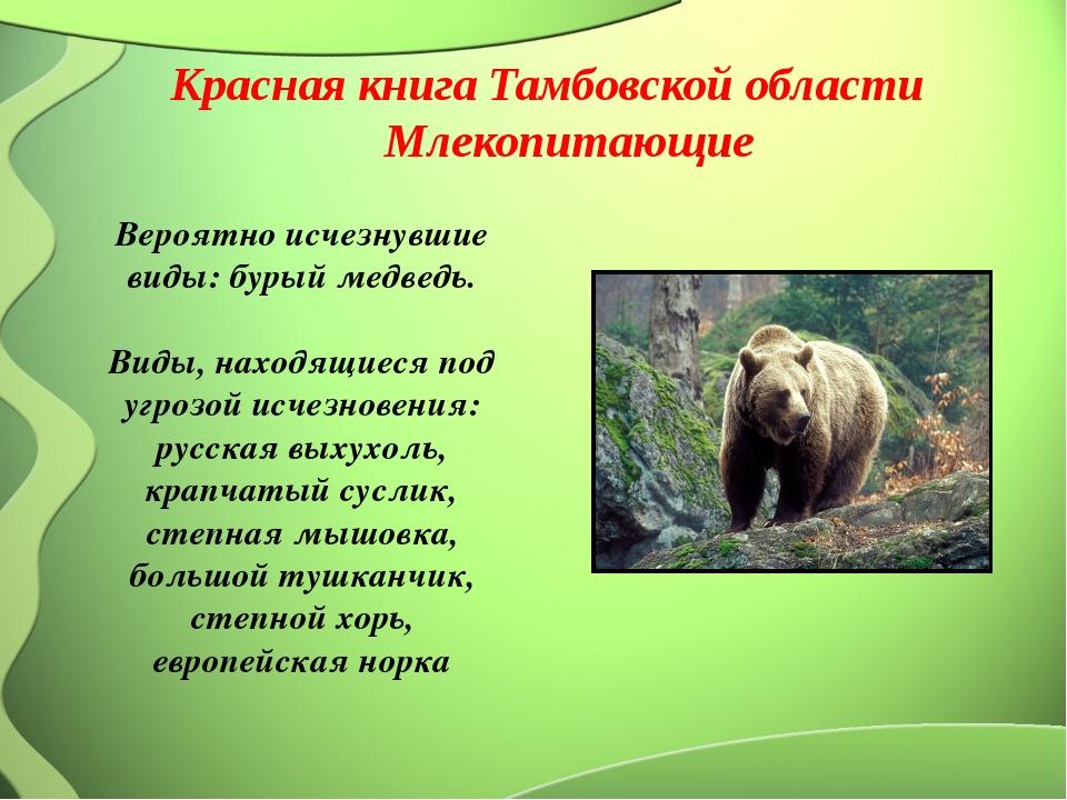 Вероятно исчезнувшие виды: бурый медведь. Виды, находящиеся под угрозой исче...