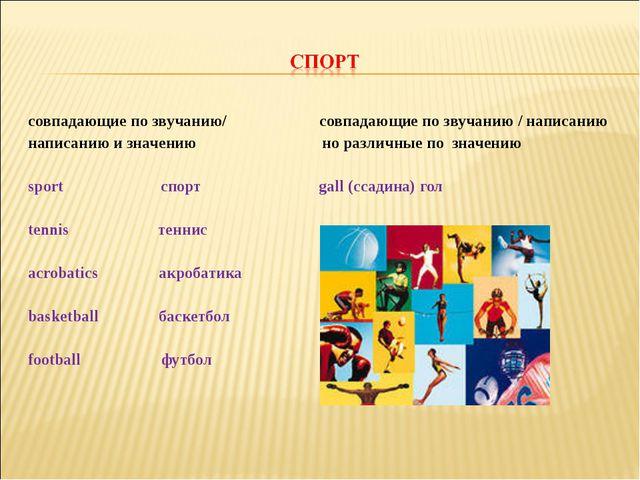 совпадающие по звучанию/ совпадающие по звучанию / написанию написанию и знач...