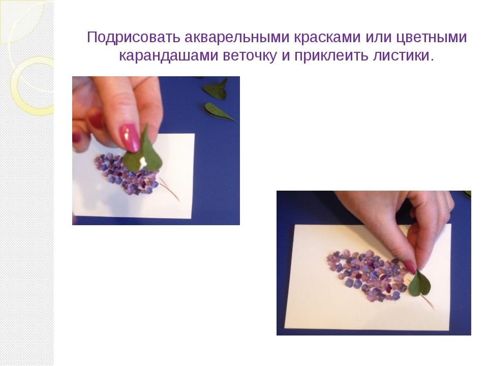 Подрисовать акварельными красками или цветными карандашами веточку и приклеит...