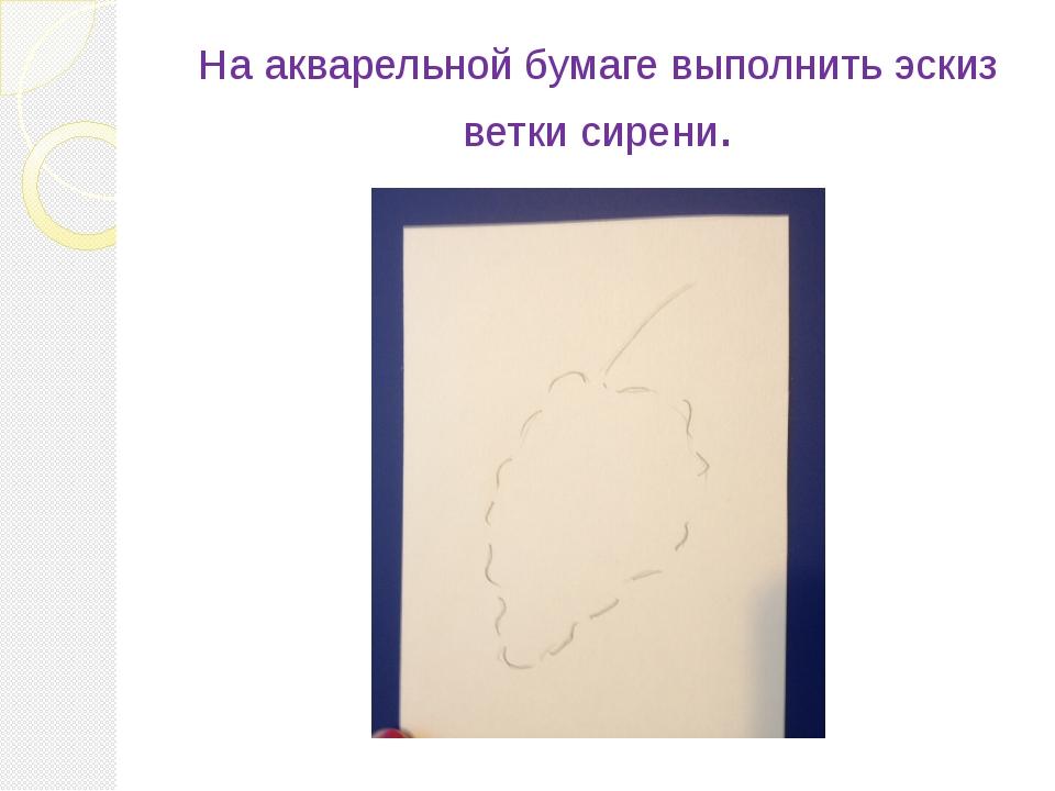 На акварельной бумаге выполнить эскиз ветки сирени.
