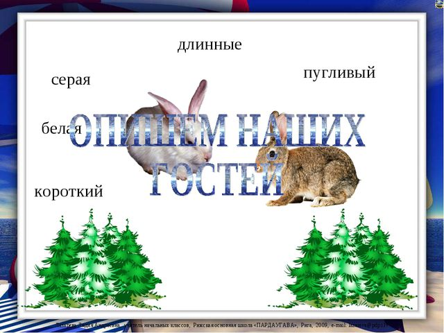 серая белая длинные короткий пугливый Лазарева Лидия Андреевна, учитель начал...