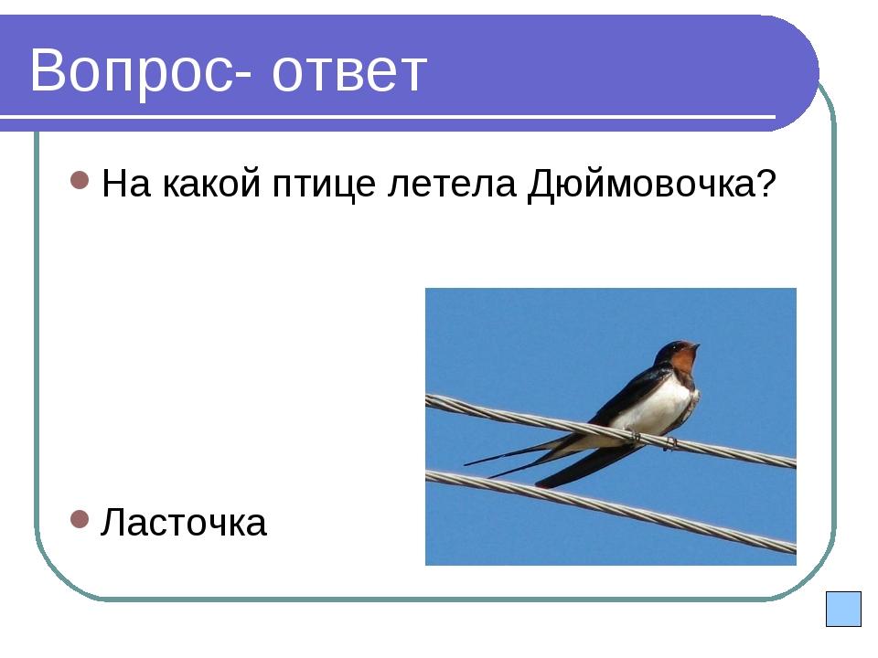 Вопрос- ответ На какой птице летела Дюймовочка? Ласточка