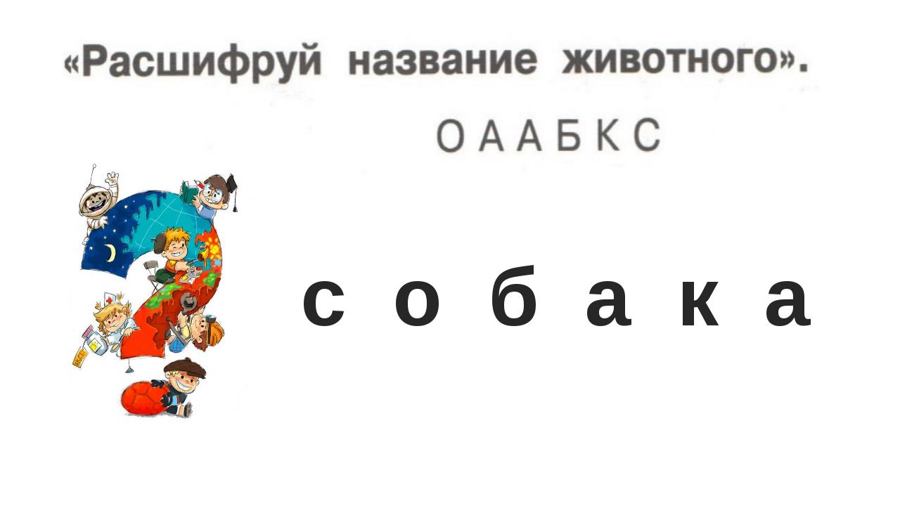 с о б а к а