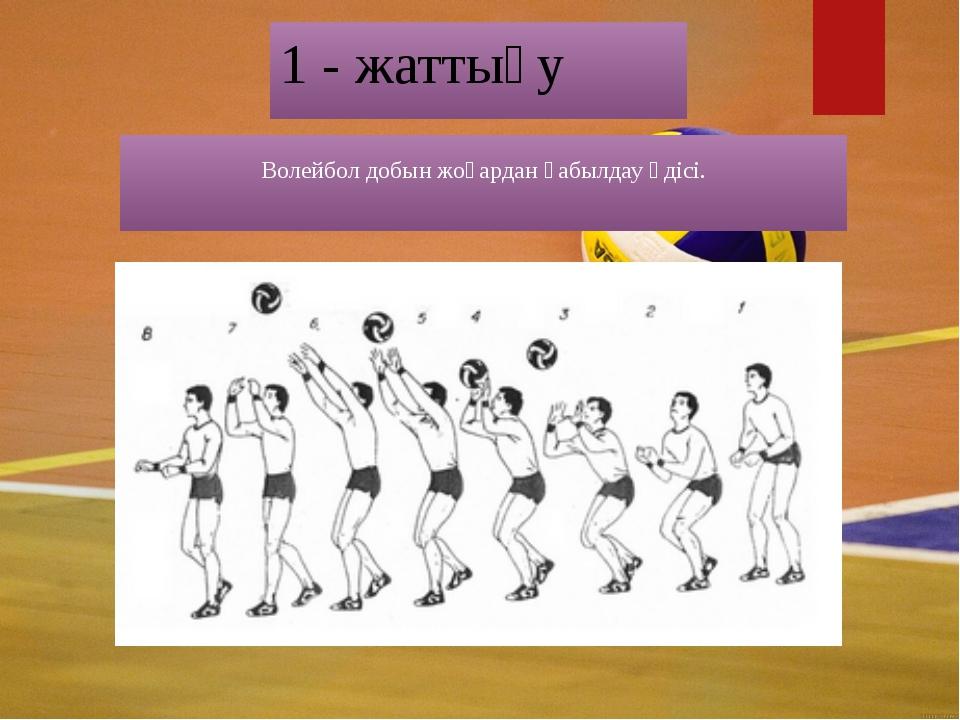 1 - жаттығу Волейбол добын жоғардан қабылдау әдісі.