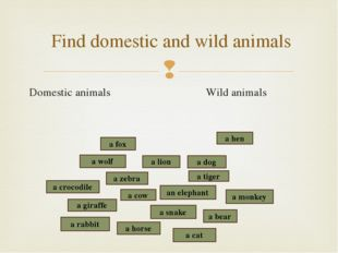 Domestic animals Wild animals Find domestic and wild animals a snake a crocod
