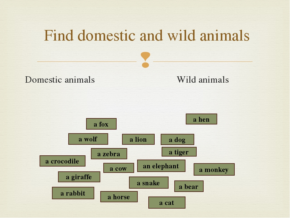 Domestic animals Wild animals Find domestic and wild animals a snake a crocod...