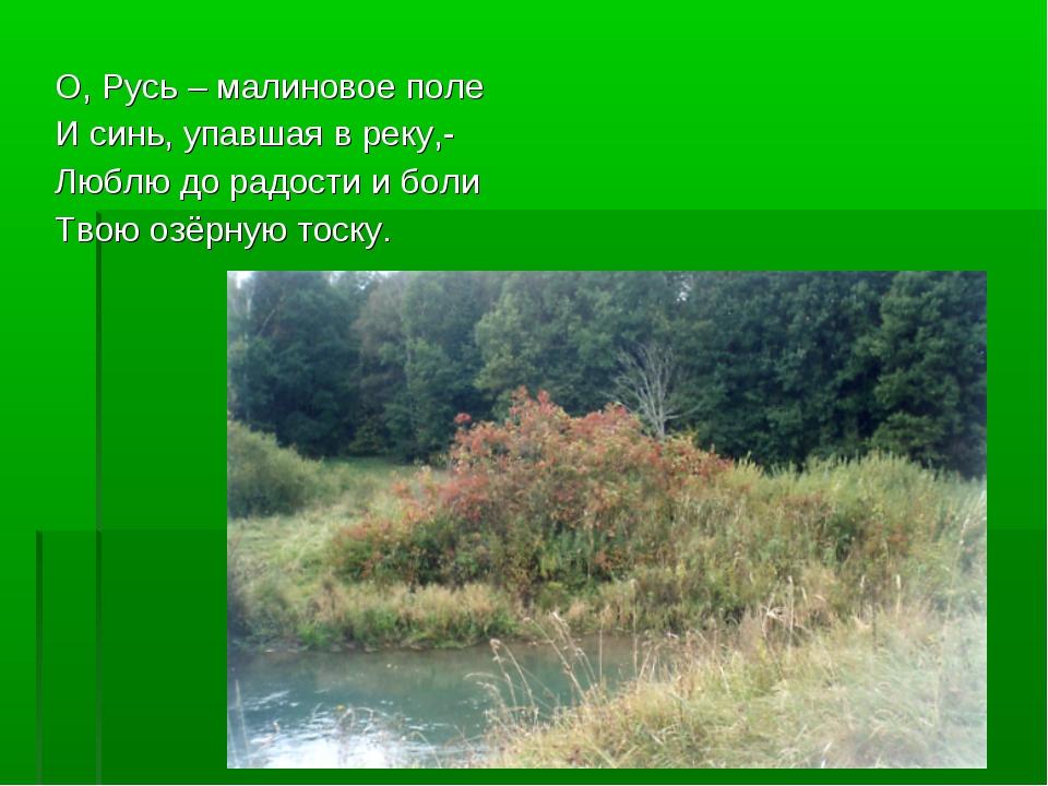 О, Русь – малиновое поле И синь, упавшая в реку,- Люблю до радости и боли Тво...