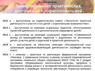 Транслирование практических достижений профессиональной деятельности 2012 г.