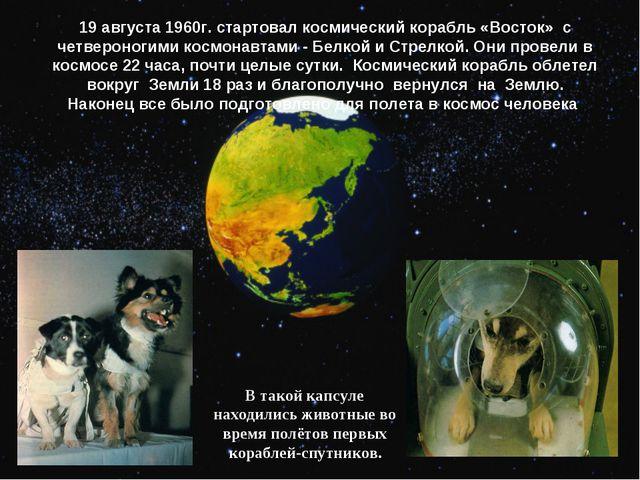 19 августа 1960г. стартовал космический корабль «Восток» с четвероногими косм...