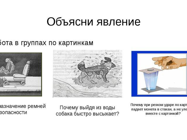 Объясни явление Работа в группах по картинкам Почему выйдя из воды собака быс...