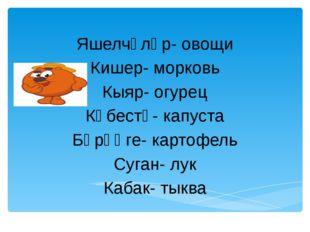 Яшелчәләр- овощи Кишер- морковь Кыяр- огурец Кәбестә- капуста Бәрәңге- карто