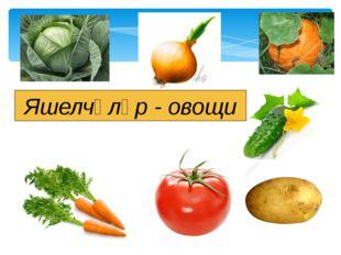 Яшелчәләр - овощи