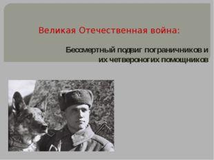 Великая Отечественная война: Бессмертный подвиг пограничников и их четвероног