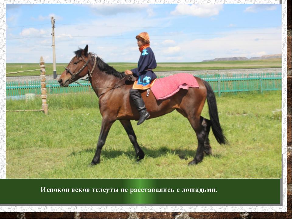 Испокон веков телеуты не расставались с лошадьми.