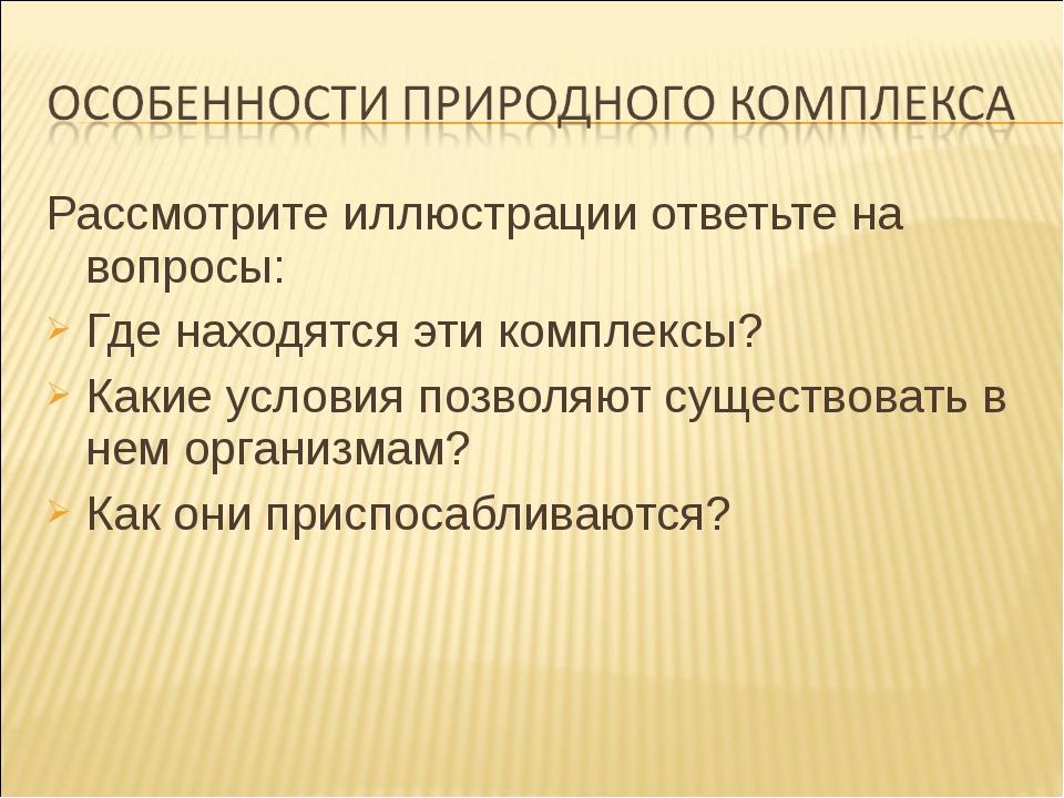 Рассмотрите иллюстрации ответьте на вопросы: Рассмотрите иллюстрации ответьт...