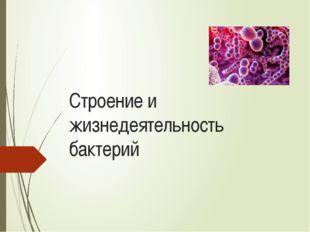 Строение и жизнедеятельность бактерий