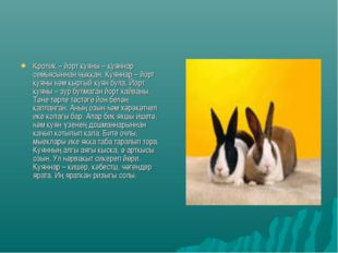 Кролик – йорт куяны – куяннар семьясыннан чыккан. Куяннар – йорт куяны һәм кы