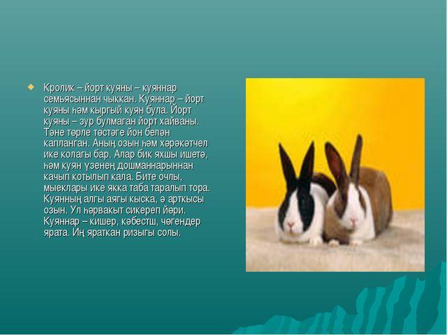 Кролик – йорт куяны – куяннар семьясыннан чыккан. Куяннар – йорт куяны һәм кы...