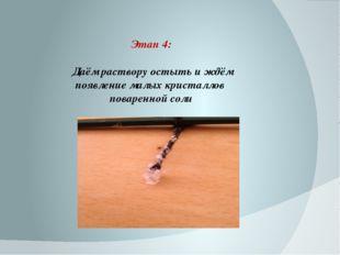 Этап 4: Даём раствору остыть и ждём появление малых кристаллов поваренной соли