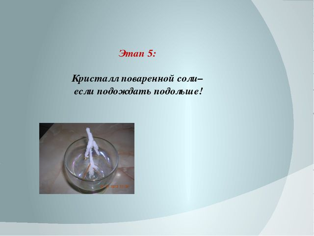 Этап 5: Кристалл поваренной соли– если подождать подольше!