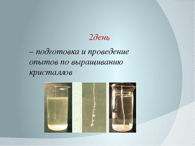 2день – подготовка и проведение опытов по выращиванию кристаллов