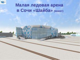 Малая ледовая арена в Сочи «Шайба» (макет)