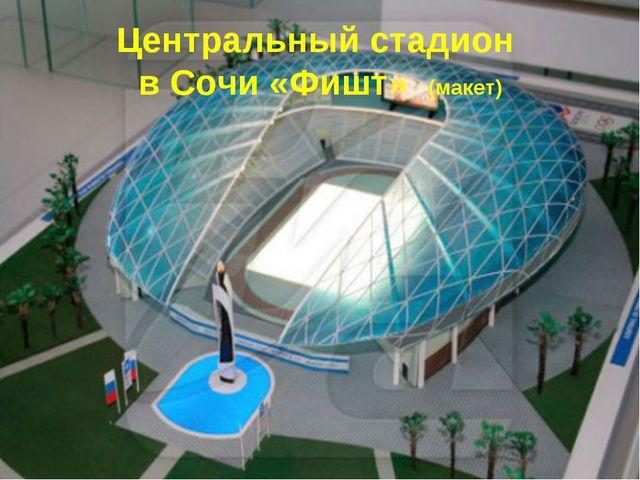 Центральный стадион в Сочи «Фишт» (макет)