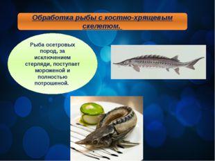 Обработка рыбы с костно-хрящевым скелетом. Рыба осетровых пород, за исключени