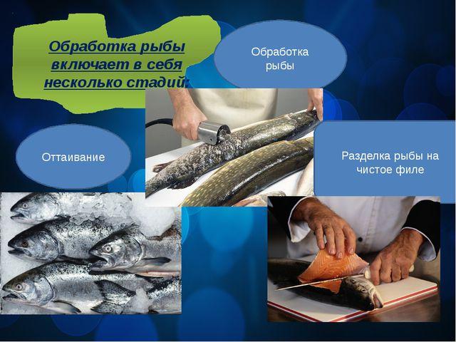 Обработка рыбы включает в себя несколько стадий: Оттаивание Обработка рыбы Ра...