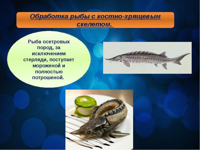 Обработка рыбы с костно-хрящевым скелетом. Рыба осетровых пород, за исключени...