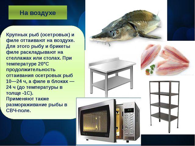 На воздухе Крупных рыб (осетровых) и филе оттаивают на воздухе. Для этого рыб...