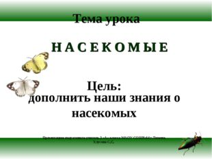 Тема урока Н А С Е К О М Ы Е Цель: дополнить наши знания о насекомых Презента