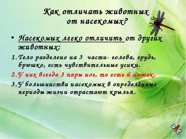 Как отличать животных от насекомых? Насекомых легко отличить от других животн...