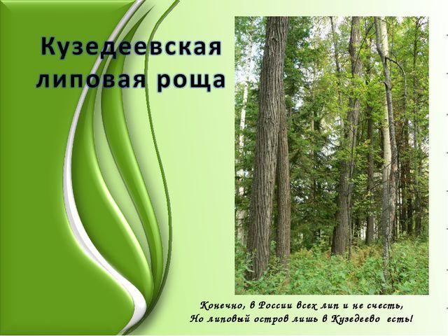 Конечно, в России всех лип и не счесть, Но липовый остров лишь в Кузедеево ес...
