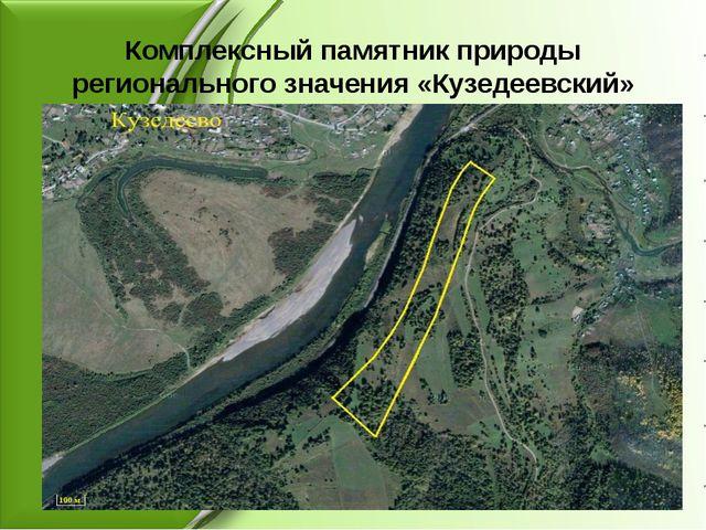 Комплексный памятник природы регионального значения «Кузедеевский»