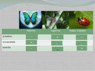 бабочка бабочка стрекоза божьякоровка ромашка колокольчик василёк - - - + + _