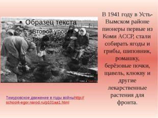 В 1941 году в Усть-Вымском районе пионеры первые из Коми АССР, стали собирать