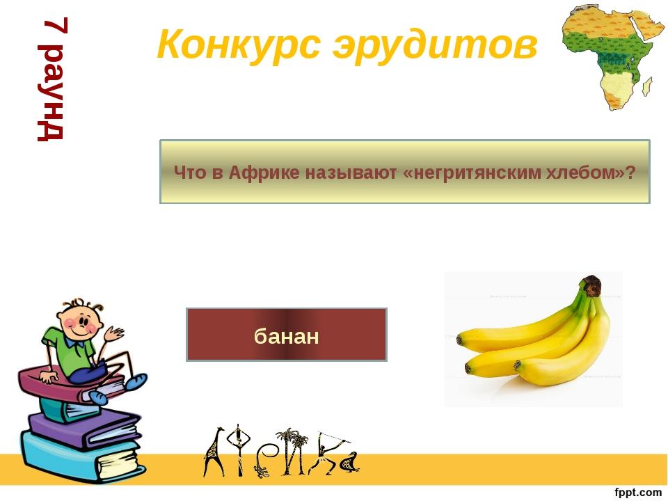 Конкурс эрудитов 7 раунд Что в Африке называют «негритянским хлебом»? банан