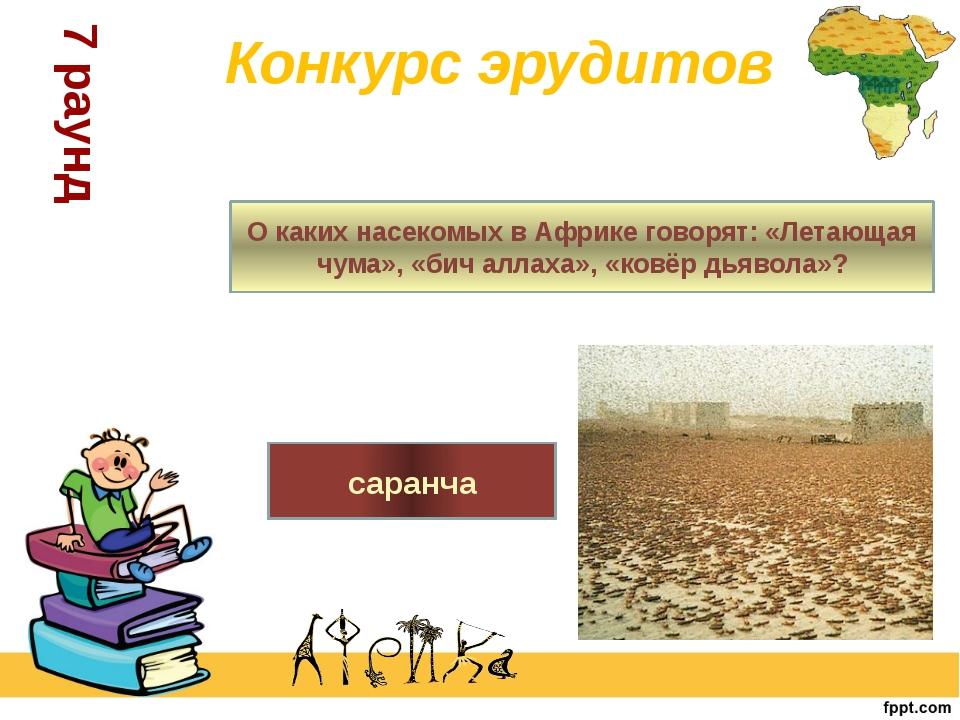 О каких насекомых в Африке говорят: «Летающая чума», «бич аллаха», «ковёр дья...