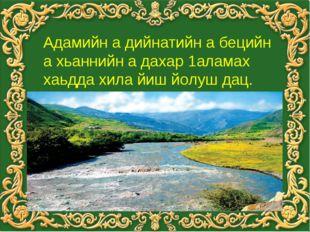 Ша вина юрт хьоме Терк Кавказ вайн Даймохк безар уьш дерриге шеца долуш ю Мам