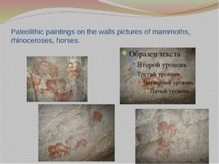 Paleolithic paintings on the walls pictures of mammoths, rhinoceroses, horses.