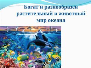 Богат и разнообразен растительный и животный мир океана