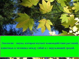 Экология – наука, которая изучает взаимодействие растений, животных и челове