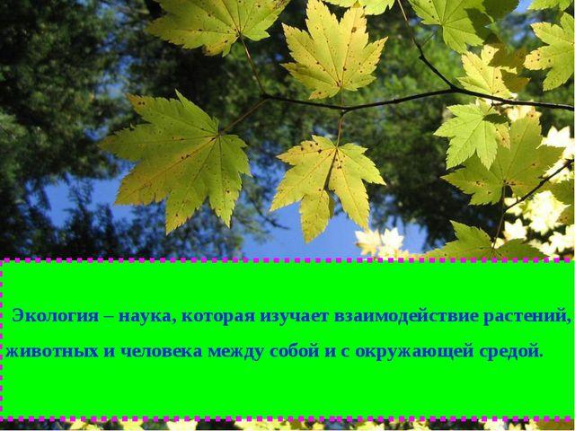 Экология – наука, которая изучает взаимодействие растений, животных и челове...