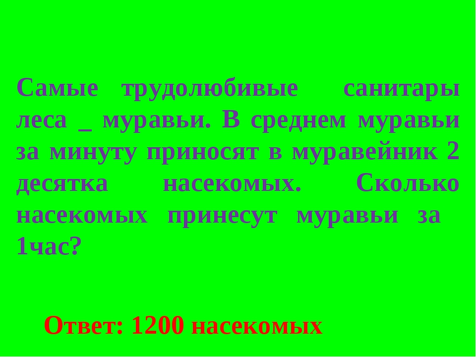 Самые трудолюбивые санитары леса _ муравьи. В среднем муравьи за минуту прино...