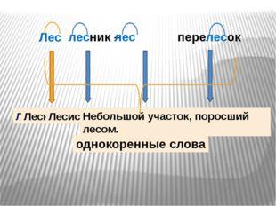 Столб-ик Пере-лес-ок Под-рост-ок Корень взаимодействует с морфемами
