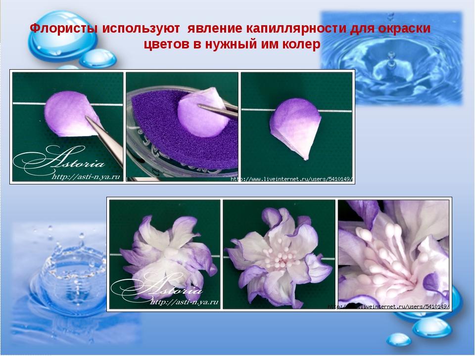 Флористы используют явление капиллярности для окраски цветов в нужный им колер