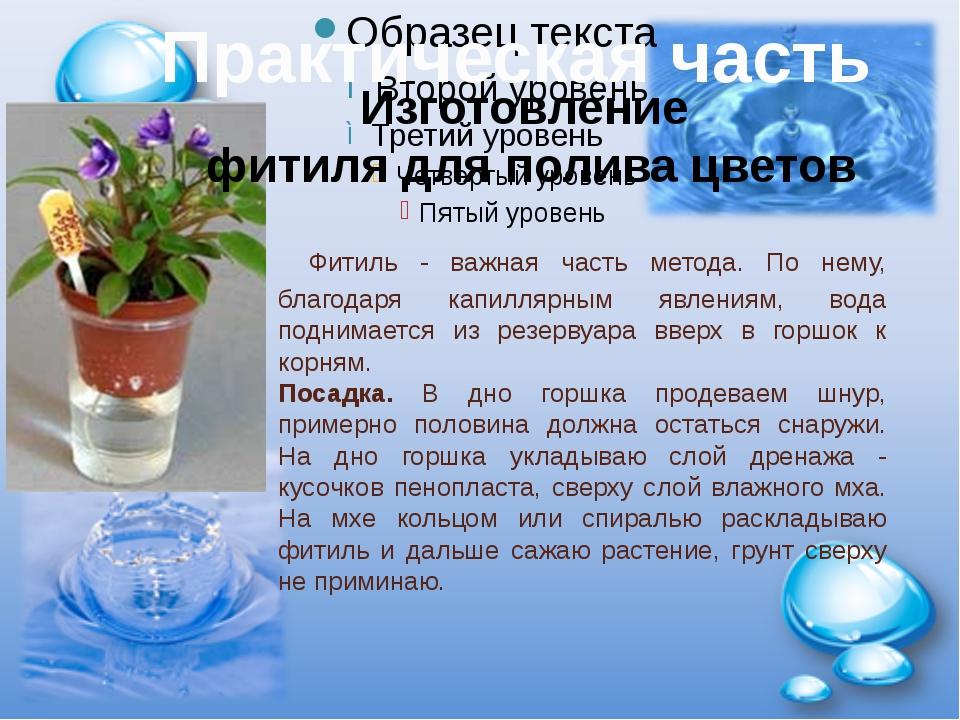 Фитиль - важная часть метода. По нему, благодаря капиллярным явлениям, вода...