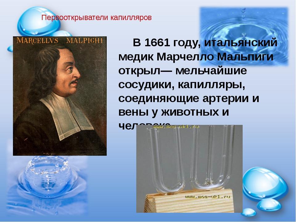 Первооткрыватели капилляров В 1661 году, итальянский медик Марчелло Мальпиги...