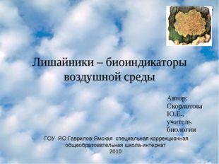 Лишайники – биоиндикаторы воздушной среды Автор: Скорлотова Ю.Е., учитель био